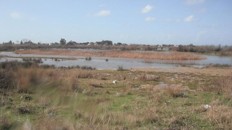 Επανασύσταση της Λίμνης Μουριάς : Από την ουτοπία σε μια επωφελή δράση