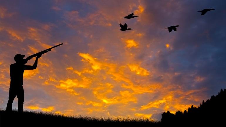 Απαγορεύτηκε το κυνήγι σε περιοχές της Χαλκιδικής