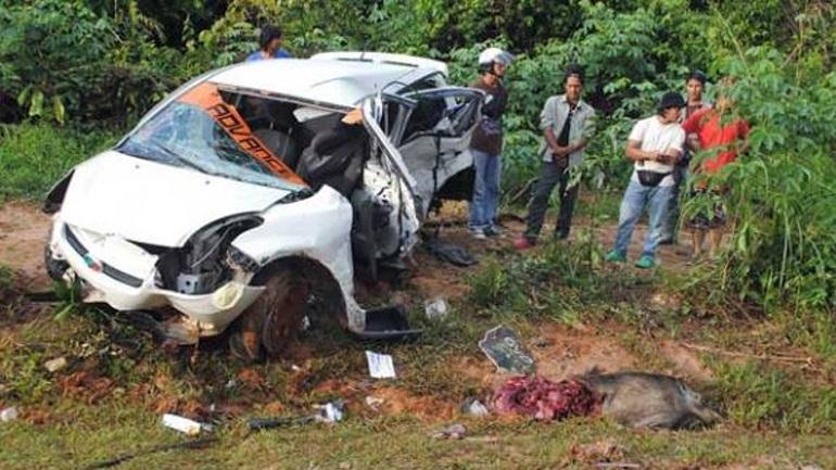 Σέρρες: Αυτοκίνητο της αστυνομίας έπεσε πάνω σε αγριογούρουνα