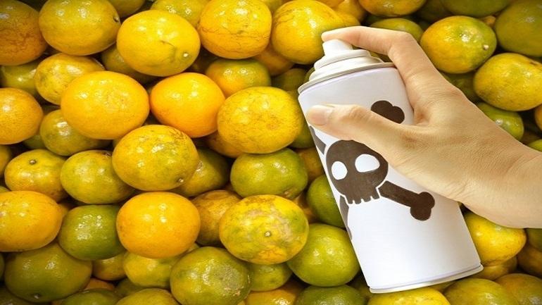 Τον κώδωνα του κινδύνου για την Κρήτη κρούουν επιστήμονες εξαιτίας της αλόγιστης χρήσης φυτοφαρμάκων