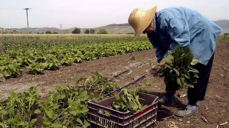Παράταση στην οριστικοποίηση των ηλεκτρονικών αιτήσεων για νέους γεωργούς