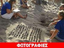 Χανιά: Γεννητούρια στην παραλία της Αγίας Μαρίνας!