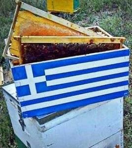 Ελλάδα- Η πατρίδα με τους 15.000 Έλληνες Μελισσοκόμους- Από τα πρώτα αγαθά που εξάγει η χώρα!!