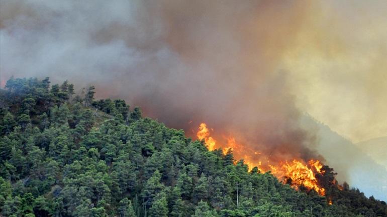 Πέντε συλλήψεις για τη φωτιά στο Σούλι Λακωνίας