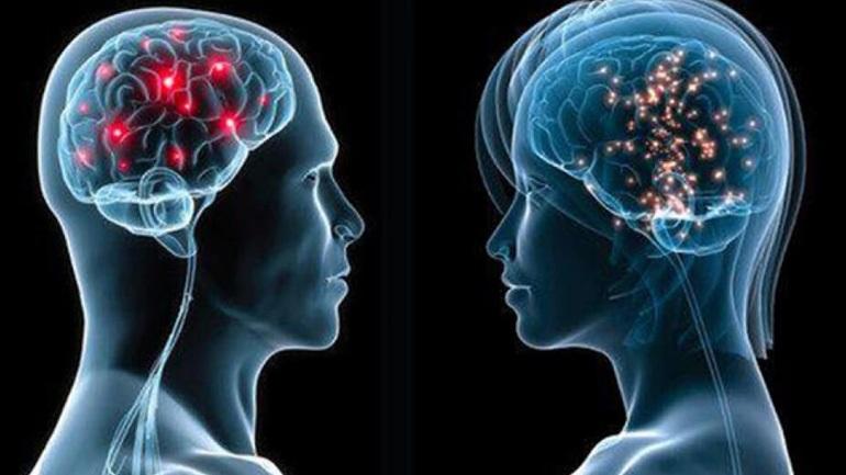 Πόσο διαφέρει τελικά ο εγκέφαλος του άνδρα από αυτόν της γυναίκας;