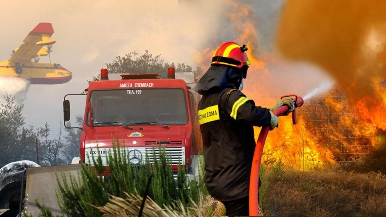 Αλεξανδρούπολη: Δασική πυρκαγιά στην περιοχή Κίρκη