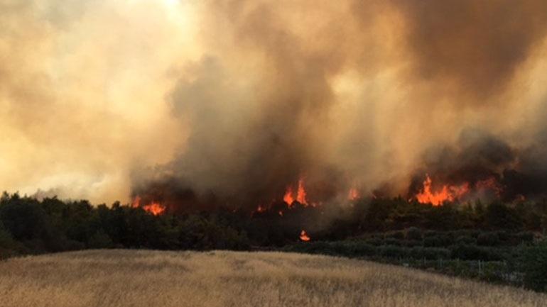 Σε εξέλιξη πυρκαγιά σε δασική έκταση στα Περιβόλια Ηλείας