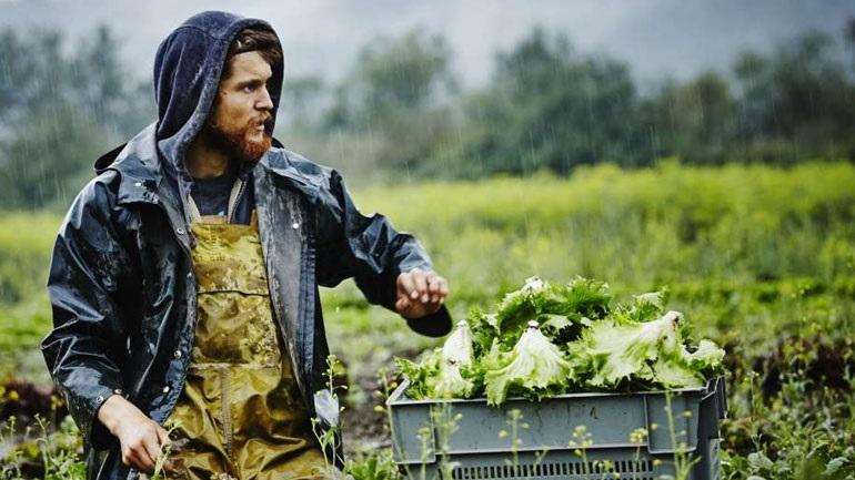 Εγκρίθηκαν μόλις 7320 νέοι αγρότες