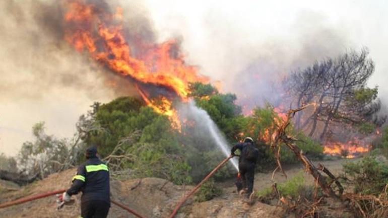 Συνεχίζεται η μάχη με τις φλόγες στην Ανατολική Αττική
