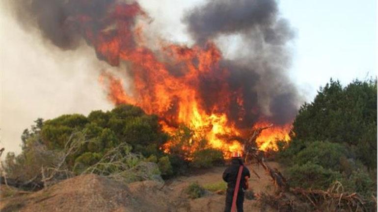 Πυρκαγιά στο Σοφικό Κορινθίας