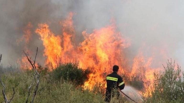 Δασική πυρκαγιά στη Μεγαλόπολη