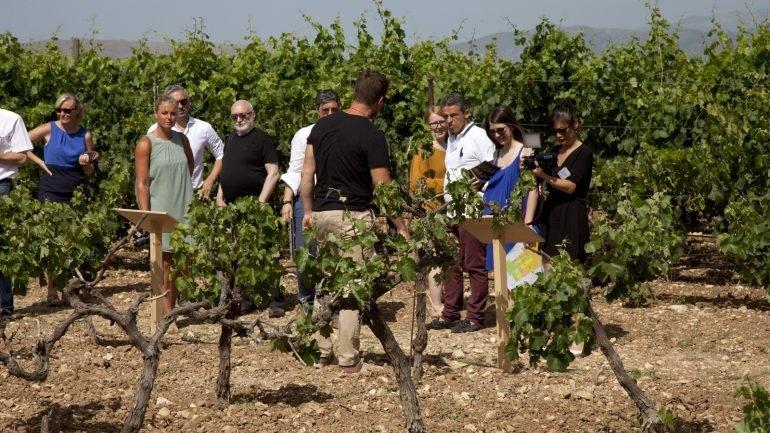 Μεγάλο αγροτουριστικό πρόγραμμα αρχίζει από την Κρήτη
