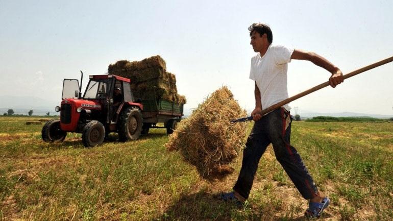 ΕΛΓΑ: Πότε θα δοθούν οι αποζημιώσεις σε αγρότες και κτηνοτρόφους