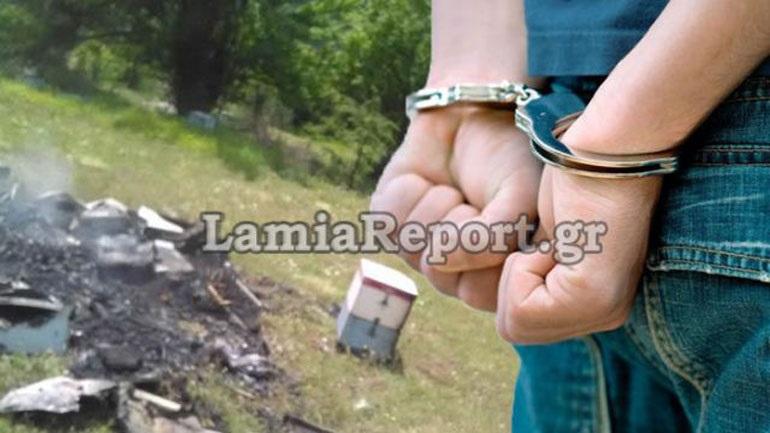 Λαμία: Συνελήφθη 49χρονος για 9 ληστείες τραπεζών και καταστροφές... δεκάδων μελισσιών!