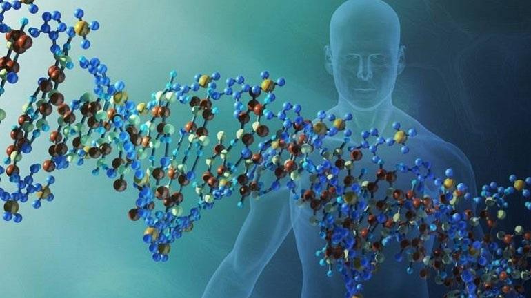 Γονίδια συνεχίζουν να λειτουργούν μετά τον θάνατο