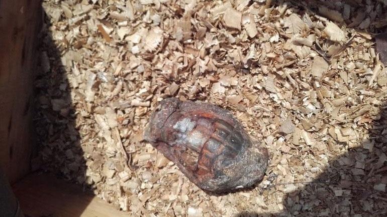 Βρέθηκε χειροβομβίδα σε εργοστάσιο στον Αλμυρό 2395650