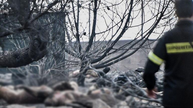 Εικόνες αποκάλυψης: Περισσότεροι από 50 οι νεκροί
