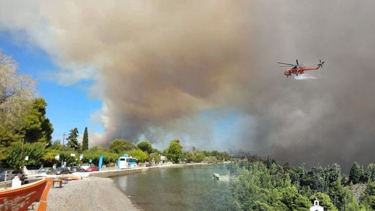 Υπό έλεγχο η πυρκαγιά στην Εύβοια - Μετά από ολονύχτια μάχη με τις φλόγες