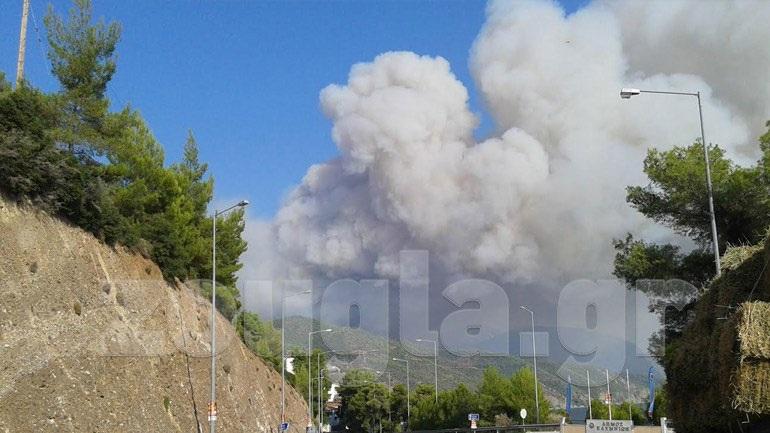 Συνελήφθη ο εμπρηστής της Εύβοιας - Είχε προκαλέσει 9 πυρκαγιές
