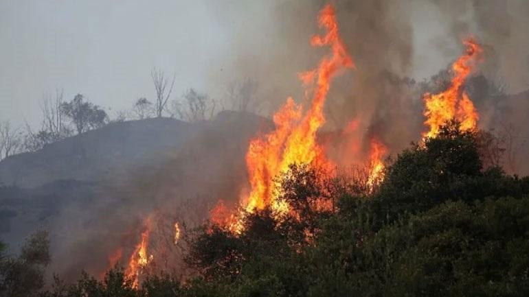 Σε εξέλιξη πυρκαγιά στην περιοχή Κελεφά Λακωνίας
