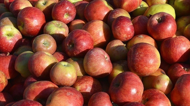 Δεσμεύτηκε μεγάλη ποσότητα φρούτων άγνωστης προέλευσης
