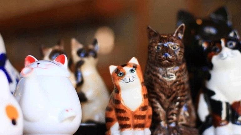 Μουσείο αφιερωμένο στις γάτες στην Κρακοβία