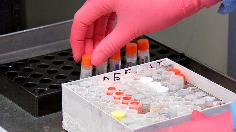 Ηράκλειο : Η καραντίνα αύξησε τη ζήτηση των τεστ εγκυμοσύνης στο