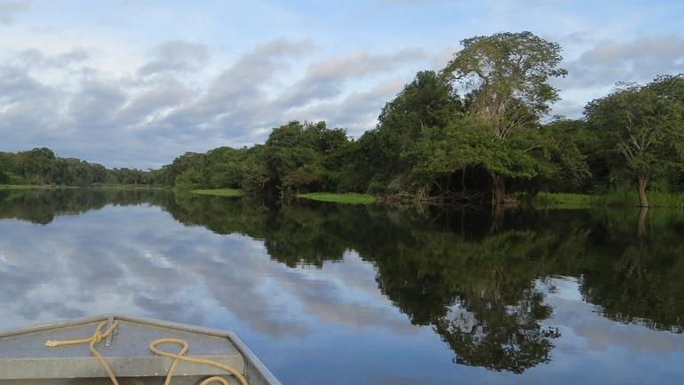 Ιθαγενείς στον Αμαζόνιo κρύβονται στη ζούγκλα για να γλιτώσουν από τον κορωνοϊό