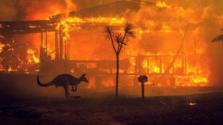 Αυστραλία: Ο καπνός από τις πυρκαγιές ευθύνεται για εκατοντάδες θανάτους