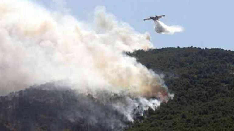 Μεγάλη πυρκαγιά σε δάσος του Αγίου Όρους