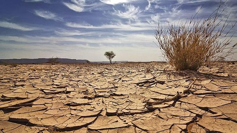 Η Κίνα επαναφέρει το πράσινο σε ερημοποιημένες εκτάσεις