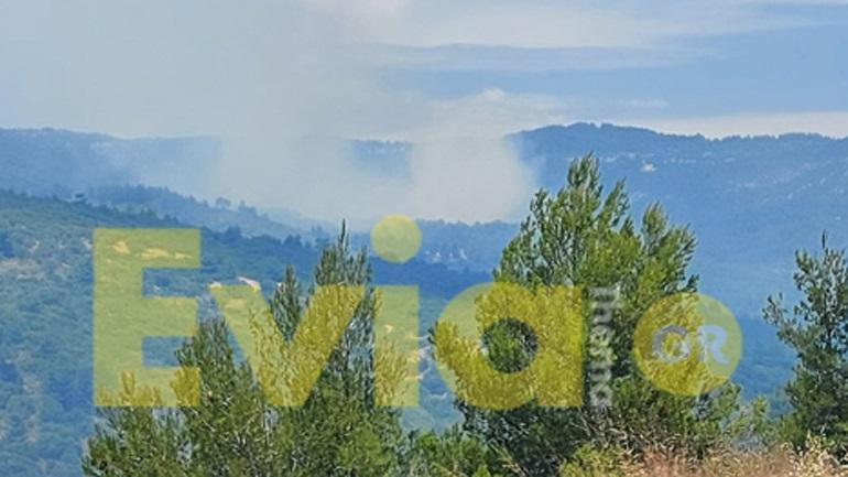 Κεραυνός προκάλεσε πυρκαγιά στο Κυπαρίσσι Ευβοίας - Σε εξέλιξη πυροσβεστική επιχείρηση