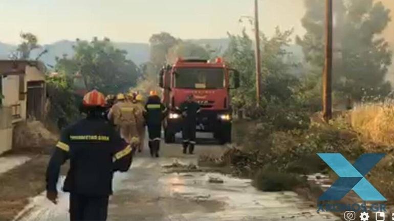Χωρίς ενεργό μέτωπο η φωτιά στη Ροδόπη - Συνεχίζεται η πυρόσβεση