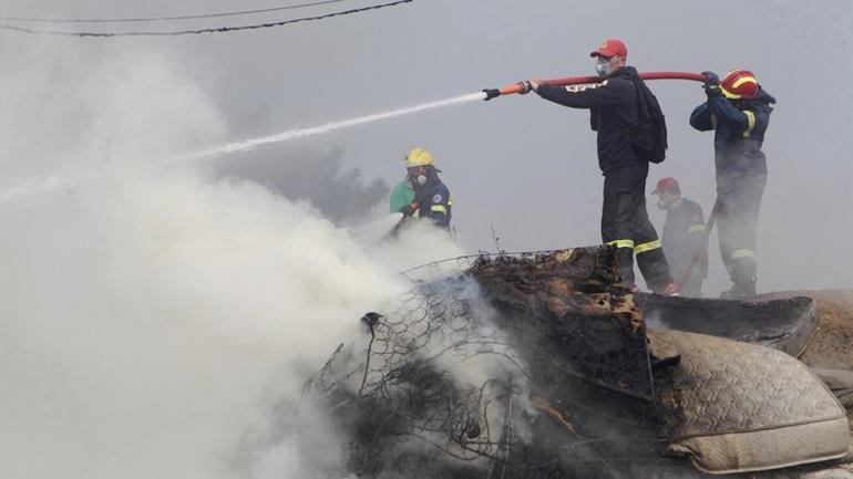 Βύρωνας: Καταστράφηκε το καταφύγιο αδέσποτων ζώων - Έκκληση από τους φιλόζωους