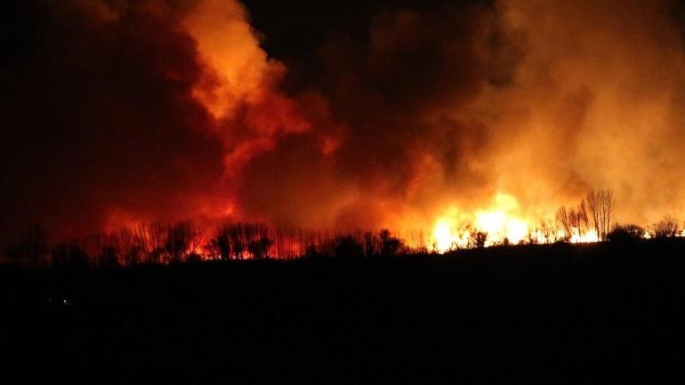 Κόρινθος: Φωτιά σε καλαμιές στη λίμνη Στυμφαλία