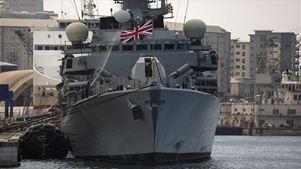 Το βρετανικό ναυτικό παραδέχεται ότι προκάλεσε μαζικό θάνατο δελφινιών