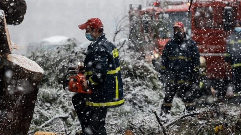 Άνδρας καταπλακώθηκε από δέντρο και έχασε τη ζωή του στην Εύβοια