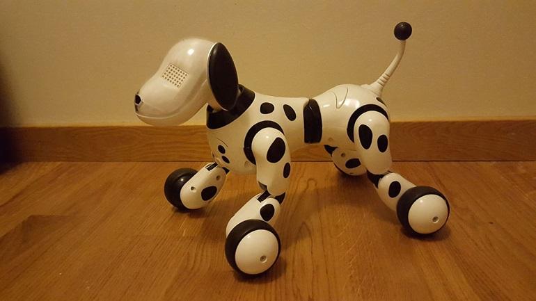 Οι καλύτεροι τρόποι για την αντιμετώπιση της μοναξιάς στο lockdown: Ρομποτικοί σκύλοι, διαλογισμός και... γέλιο