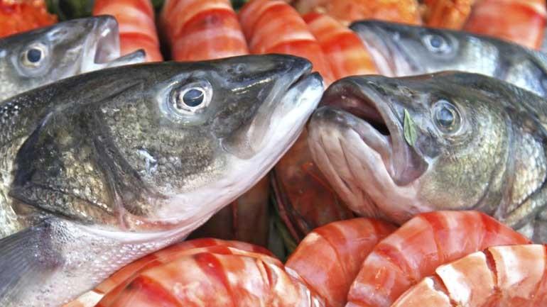 Νέα έρευνα: Η ψαρομεσογειακή διατροφή και η νηστεία προστατεύουν τον οργανισμό