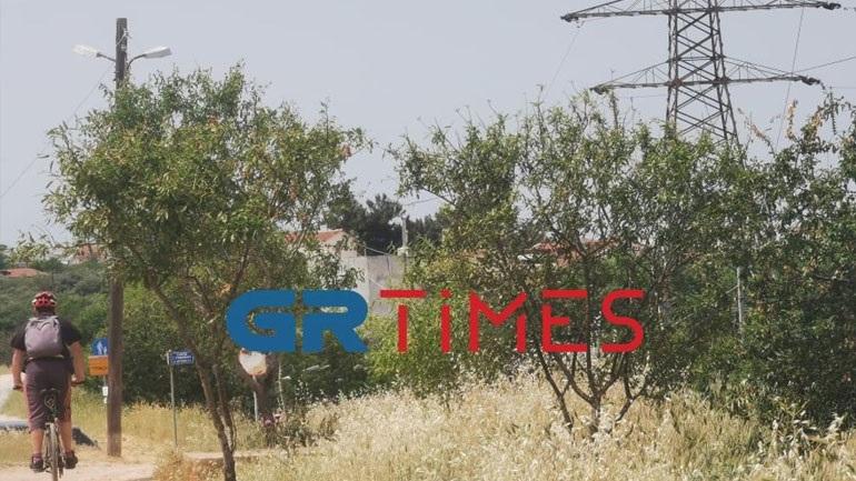 Καλώδια «κίνδυνος-θάνατος» στην Πυλαία