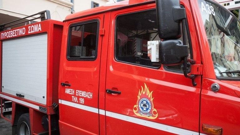 Πυρκαγιά κοντά στην Εθνική Οδό Λαρίσης-Τρικάλων