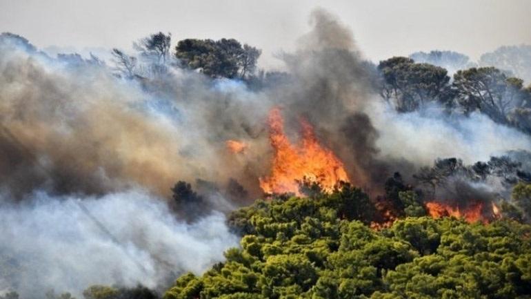 Κύπρος: Ολονύκτια συνέχιση των προσπαθειών για κατάσβεση της πυρκαγιάς