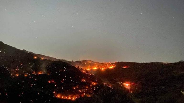 Σαράντα δασικές πυρκαγιές το τελευταίο 24ωρο σε όλη την Ελλάδα