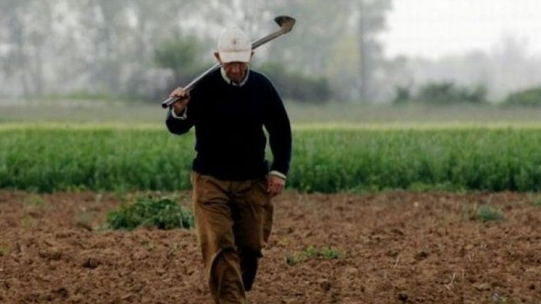 Ολοκλήρωση εκκαθάρισης ασφαλιστικών εισφορών εργατών γης