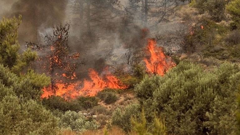 Μαίνεται η πυρκαγιά στην Λίμνη Εύβοιας – Κάηκαν οικισμοί