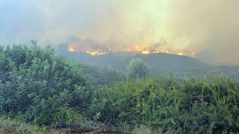 Πυρκαγιά στη Ζαχάρω