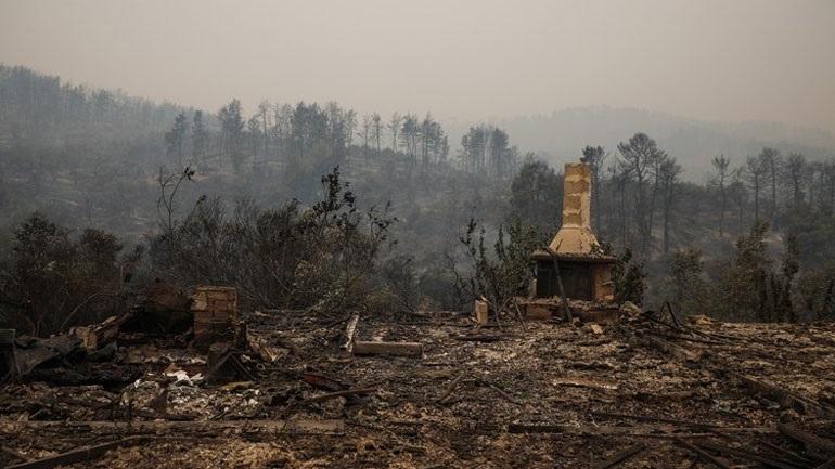Κάηκαν περισσότερα από 650.000 στρέμματα γης