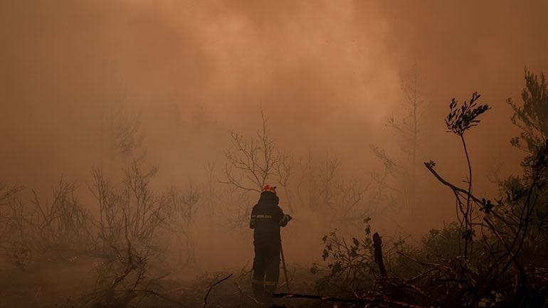 Η Βαυαρία προτίθεται να στείλει βοήθεια στην Ελλάδα για τις πυρκαγιές