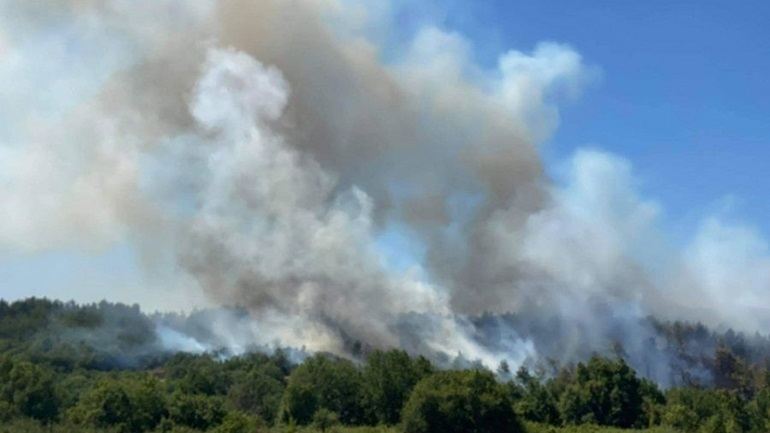 Κομοτηνή: Πάνω από 100 στρέμματα δασικής έκτασης έκαψε η φωτιά στη Νυμφαία