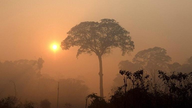 Οργανώσεις αυτοχθόνων ζήτησαν την προστασία της Αμαζονίας